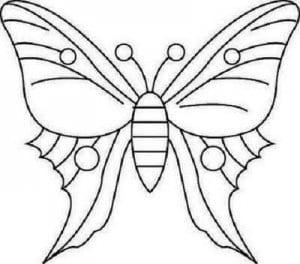 бесплатно раскраска бабочка для детей 3 4 лет
