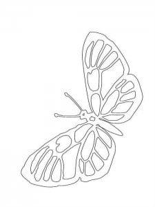 бесплатно раскраска бабочка распечатать а4