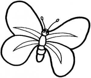 бесплатно раскраски бабочек для детей детского сада