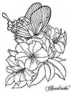 бесплатно раскраски бабочки 4 года