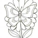 бесплатно раскраски бабочки  формат а4