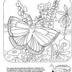 бесплатно раскраски для девочек  бабочек