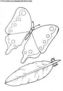 бесплатно раскраски про бабочек распечатать