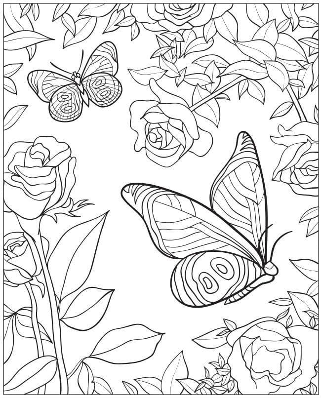 Распечатать картинки цветы и бабочки, днем
