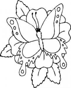 бесплатно распечатать  новые раскраски бабочки