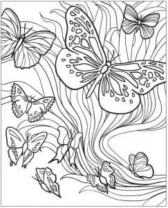 бесплатно распечатать раскраски цветы и бабочки