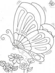 бесплатно рисунок для детей раскраска бабочка