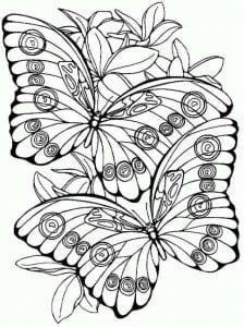 бесплатно самых маленьких бабочка раскраска для