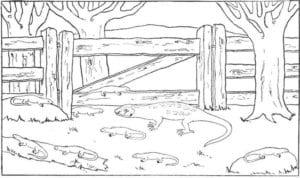 besplatno-skachat-raskraski-dver-raspechatat-300x178 Двери и арки