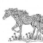 для детей раскраска лошадь картинка