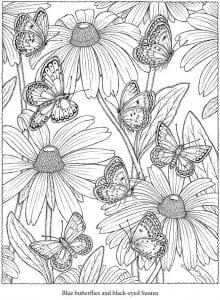 бесплатно тему бабочки раскраски на