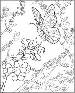 detej-2-3-let-babochka-raskraska-dlja-242x300 Бабочки