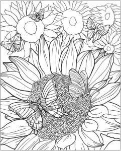 detej-3-4-let-raskraska-babochka-dlja-241x300 Бабочки