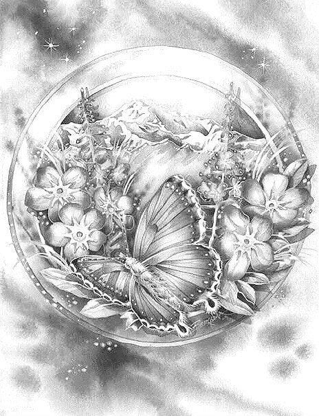 детей 5 лет раскраска бабочка для