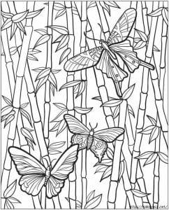 детей бабочки распечатать бесплатно раскраски для
