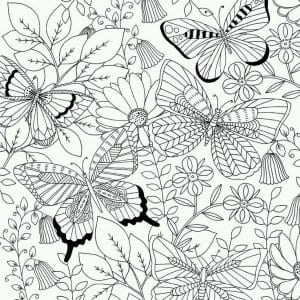 детей детского сада раскраски бабочек для