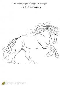 картинки лошади раскраски