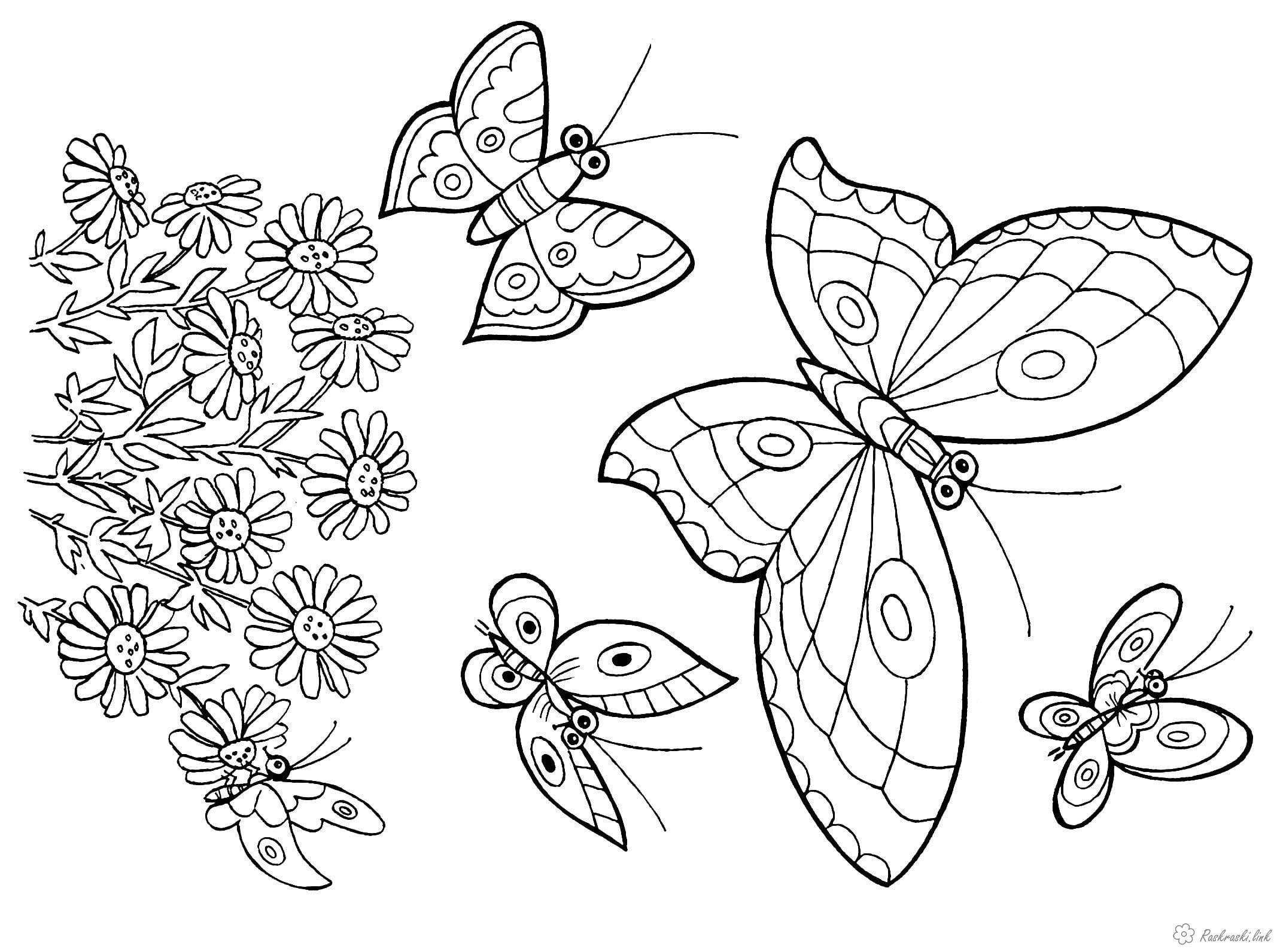 детей раскраска бабочка рисунок для | Рисовака