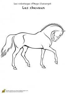картинки раскраски распечатать лошади