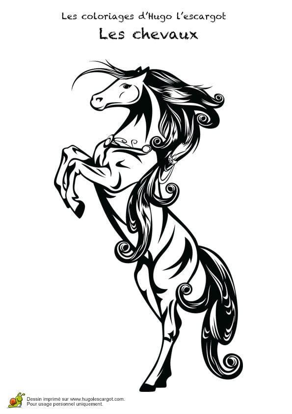 кони лошади раскраски антистресс рисунок