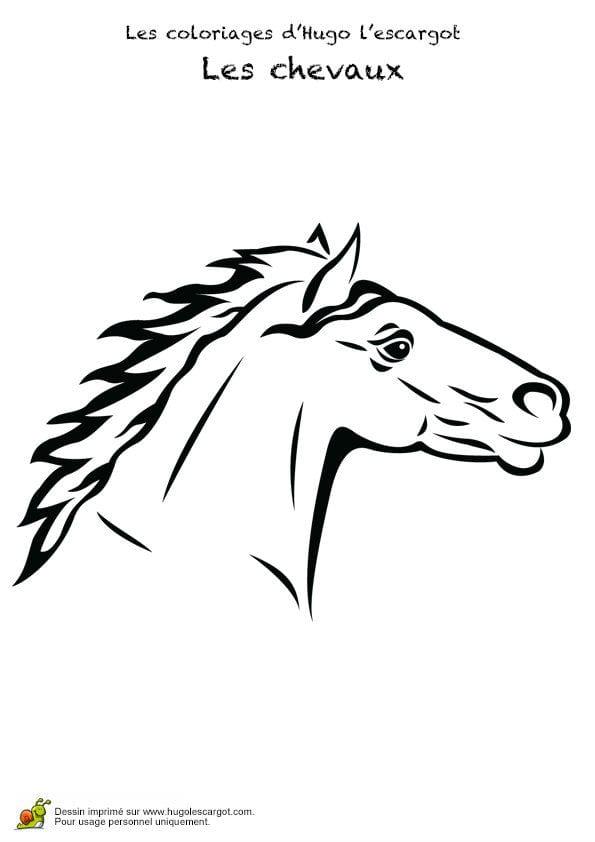 кони лошади раскраски