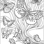 девочек бесплатно бабочек раскраски для