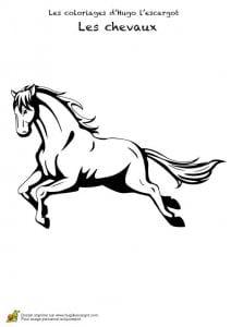 красивые раскраски лошадей