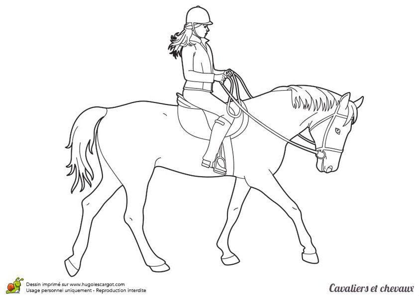 лошадей найти раскраски про
