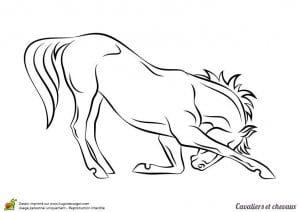 лошадей онлайн раскраски про