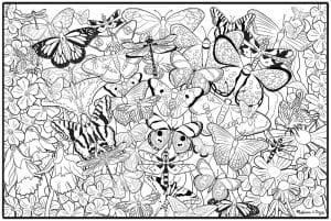 для девочек бабочки распечатать раскраска