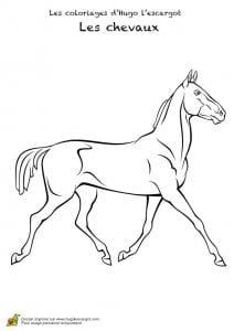 лошадей бесплатные раскраски про