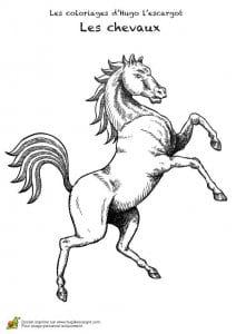 лошадей красивые раскраски