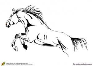 лошадей раскраски для девочек про