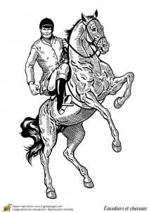 лошадей раскраски картинки про