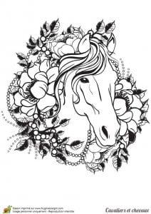 лошадей раскраски про пони