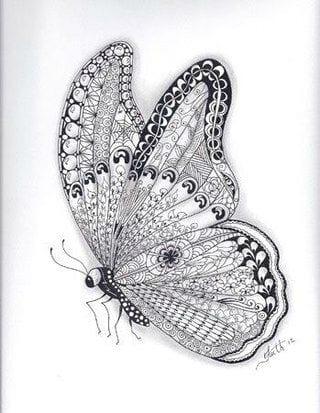 и бабочки картинки раскраски цветы