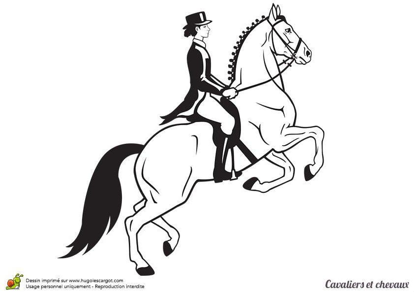 лошадей распечатать раскраска про
