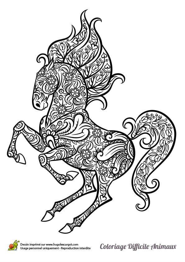 karandashom-dlja-detej-raskraski-risunok-loshadi Лошади и единороги