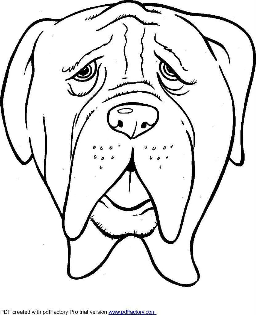 картинка собаки для детей раскраска