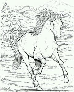 kartinki-krasivye-raskraski-loshadi-241x300 Лошади и единороги