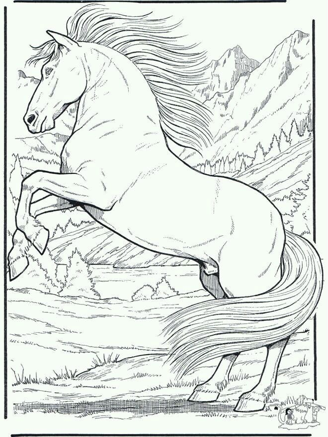 лошади девочкам распечатать раскраски