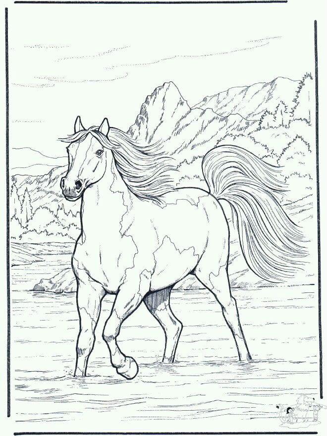 лошади детские раскраски