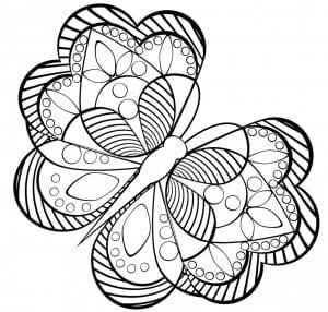 картинки раскраски бабочек красивых