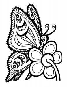 картинки раскраски бабочки
