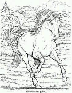 лошади для раскраски контур