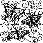 красивые распечатать раскраски бабочки
