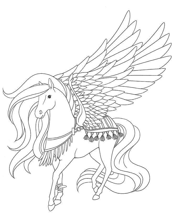 лошади раскраски для девочек