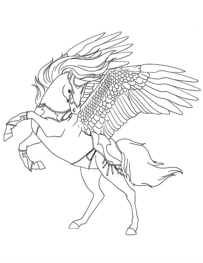 лошади раскраски печатать