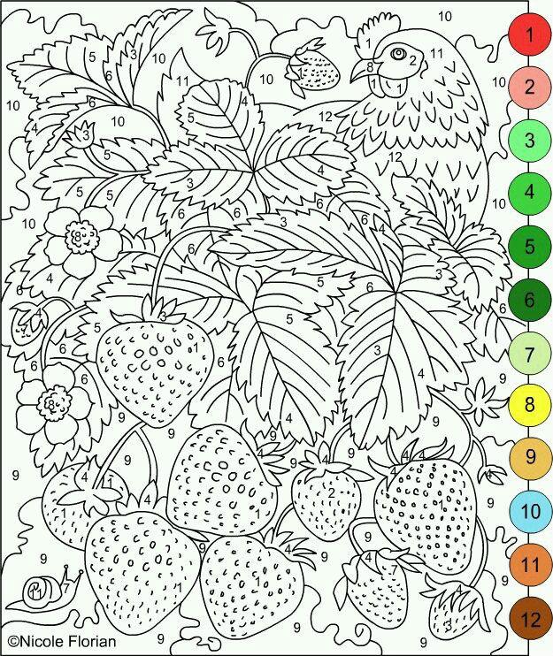 po-nomeram-dlja-vzroslyh-raskraska по номерам для взрослых раскраска