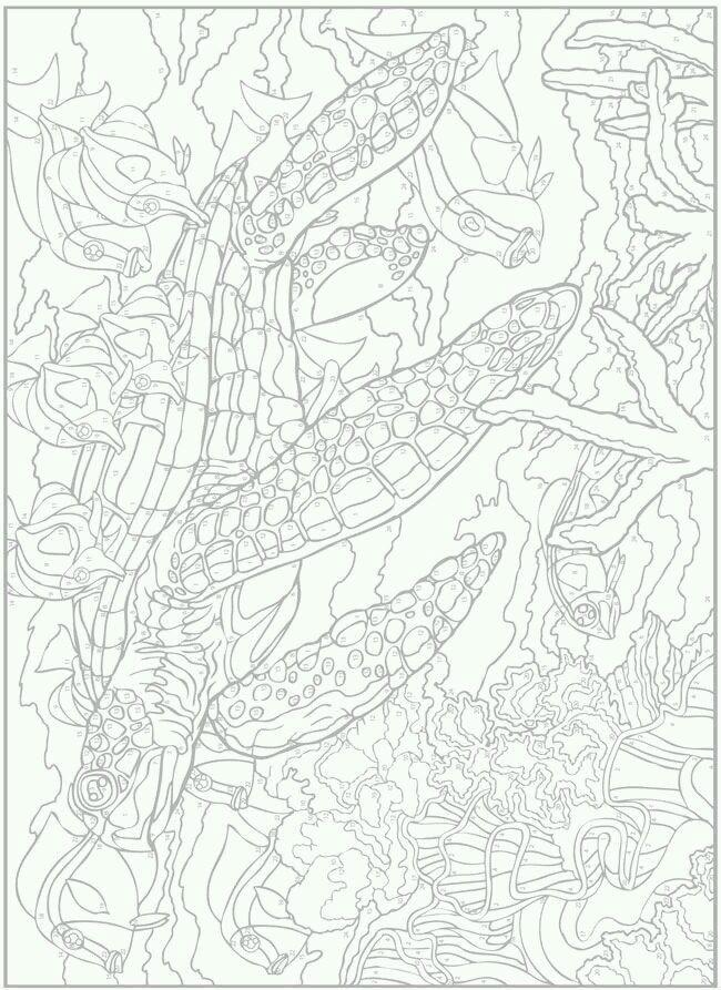 по номерам распечатать сложные раскраски - Рисовака